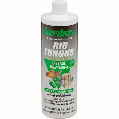 Kordon Rid-Fungus [473ml] - na grzybice