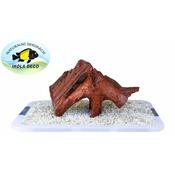 Korzeń Driftwood M [29-36cm]