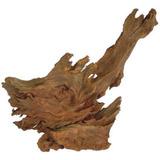 Korzeń mangrowca [1szt] - 40-60cm