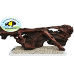 Korzeń mangrowca XL (90-145cm) - 1 sztuka