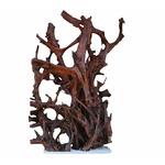 Korzeń mangrowca XXL (160-180cm) Ikola