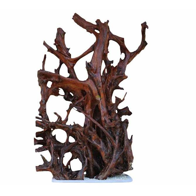 Korzeń mangrowca XXL (160-180cm) Ikola - 1 sztuka