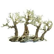 Korzeń ProGrow Bonsai Tree BT2M [30x15x23cm]
