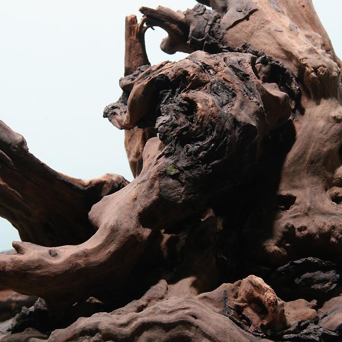 Korzenie Drift Wood  stare RA[1kg]
