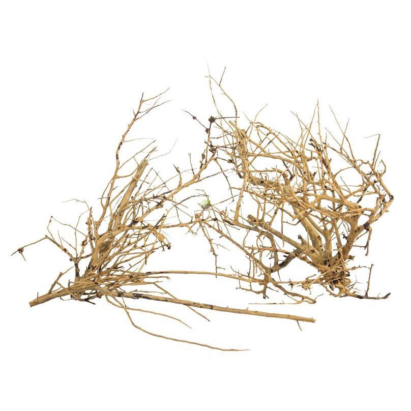 Korzenie ProGrow BRANCH WOOD - 0.1kg  - na drzewko, nie zamawiać