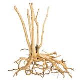 Korzenie ProGrow FINE WOOD STUMP [1kg]
