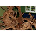 Korzenie RED MOOR WOOD - 1kg (na wagę) - korzenie z wrzosowisk