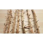 Korzenie TREE WOOD (1 szt)