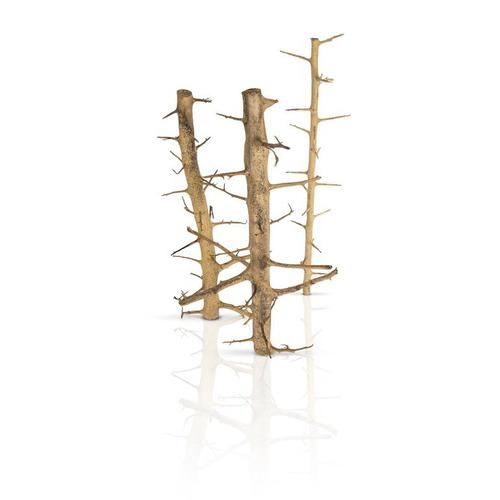 Korzenie TREE WOOD - 1kg (na wagę)