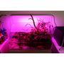 Lampa Chihiros LED RGB A-601 Plus [60-80cm] - bluetooth