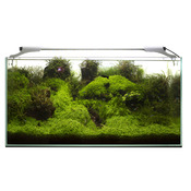 Lampa LED AquaEL LEDDY SLIM [10W] - plant