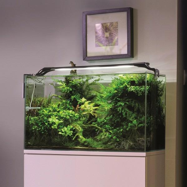 Aquael Lampa Led Aquael Leddy Slim 32w Plant Czarna Sklep Akwarystyczny