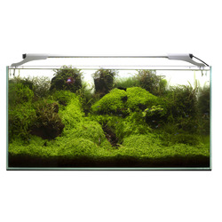 Lampa LED AquaEL LEDDY SLIM [32W] - PLANT - srebrna