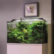 Lampa LED AquaEL LEDDY SLIM [36W] - PLANT - czarna