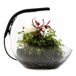Lampa LED Aqualighter NANO Soft black - do kuli/wabi-kusa (czarna)