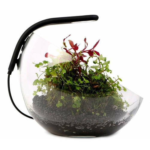 Lampa LED Aqualighter PICO Soft black - do kuli/wabi-kusa (czarna)