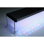 Lampa Twinstar E-line [31W] - do akwarium 60-75cm (LIGHT 600EA)