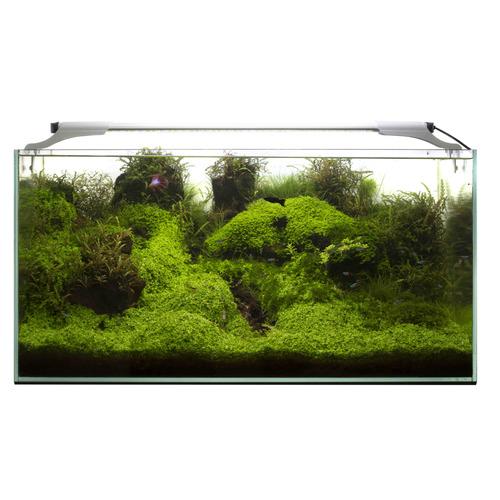 Lampka nano Aquael Leddy SLIM DUO [16W] SUNNY+PLANT - srebrna
