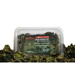 Liście pokrzywy do akwarium [30-50 szt] - pokarm dla krewetek