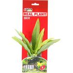 MICROSORIUM 8 [L]- Rośliny z miękkiego, tkanego materiału
