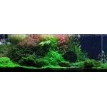 Nawóz Aqua Rebell - MAKRO BASIC Estimative Index [1000ml] - makroelementy