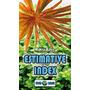 Nawóz Aqua Rebell - MAKRO BASIC Estimative Index [5000ml] - makroelementy