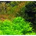 Nawóz Aqua Rebell - MIKRO SPEZIAL Flowgrow [500ml] - mikroelementy