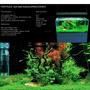 Nawóz Easy-life Fosfo [250ml] - fosfor