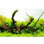Podłoże H.E.L.P. Advanced Soil Plants [8l]
