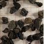Podłoże Lawa z Sulawesi [4l] - rozmiar S