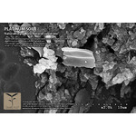 Podłoże QualDrop Platinum soil SUPER POWDER [1l] - bardzo drobne