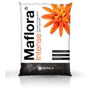 Podłoże Rotala Maflora INTENSE [10l] - normal