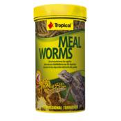 Pokarm Tropical Meal worms [250ml] (11184) - pokarm dla gadów