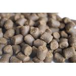 Pokarm Vitalis Catfish Pellets M 6mm [1,8kg] - dla ryb dennych