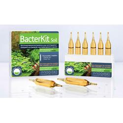 Prodibio BacterKit Soil 6 amp. - Naturalne bakterie