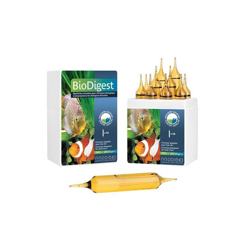 Prodibio Biodigest PRO 10 ampułek - Kultury żywych bakterii