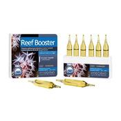 Prodibio Reef Booster 6 ampułek - suplement dla prawidłowego rozwoju bezkręgowców