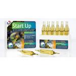 Prodibio Start Up 12 ampułek - Ogranicza wzrost niejonowego amoniaku NH3 i produkcję azotynów.