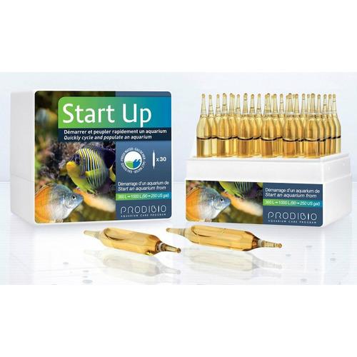 Prodibio Start Up 30 ampułek - Ogranicza wzrost niejonowego amoniaku NH3 i produkcję azotynów.