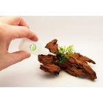 RA Green Glue [20g] - klej do mchów i epifitów