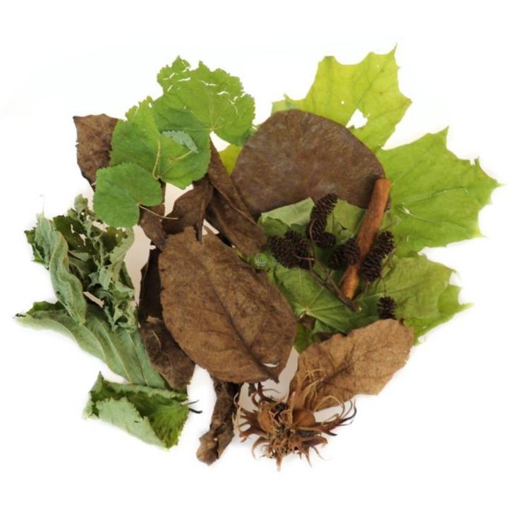 Rarytasy dla Krewetek [1l] - mix liści