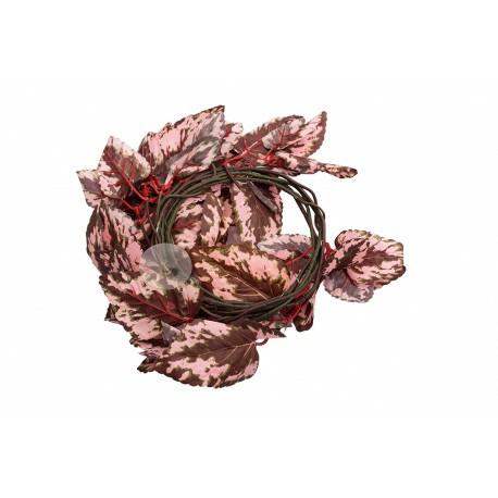 Repti-Zoo roślina wisząca 190cm - Begonia