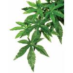 Repti-Zoo roślina wisząca 40cm - Zaślaz