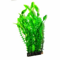 Roślina kępkowa CP-035 8'' [20CM]