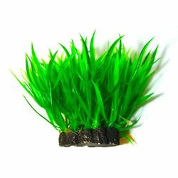 Roślina kępkowa PR-203 3\