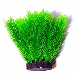 Roślina kępkowa PR-402 4'' [10CM]