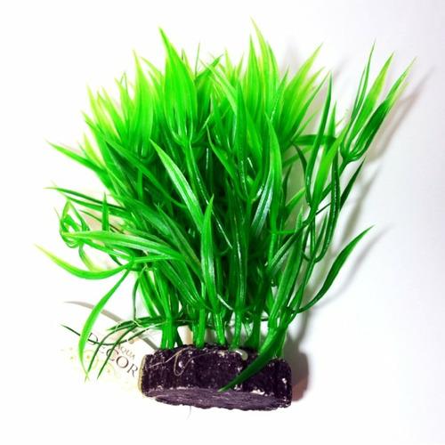 Roślina kępkowa PR-410 4'' [10CM]