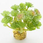 Roślina sztuczna Yusee - drzewko szczęścia (12x9x11cm)