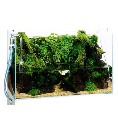 Rośliny ze zdjęcia - aranżacja nr3
