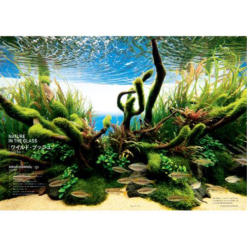 Rośliny ze zdjęcia - aranżacja nr6
